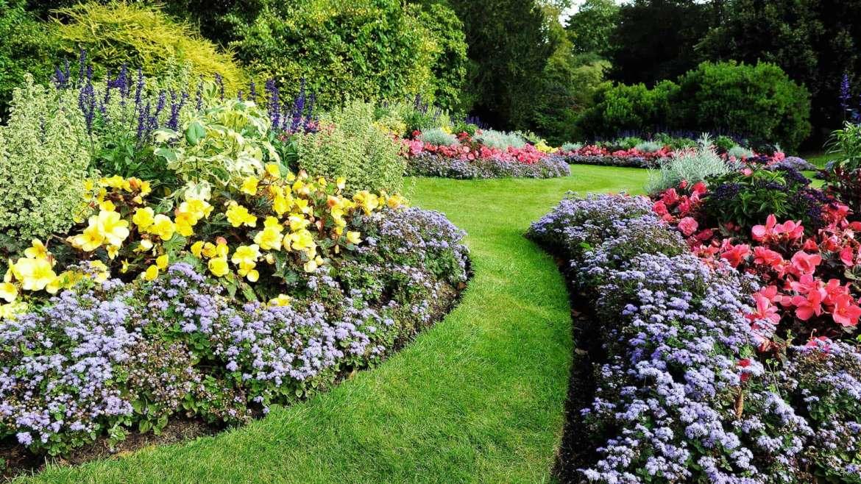 Giardino in primavera: il risveglio delle aree verdi