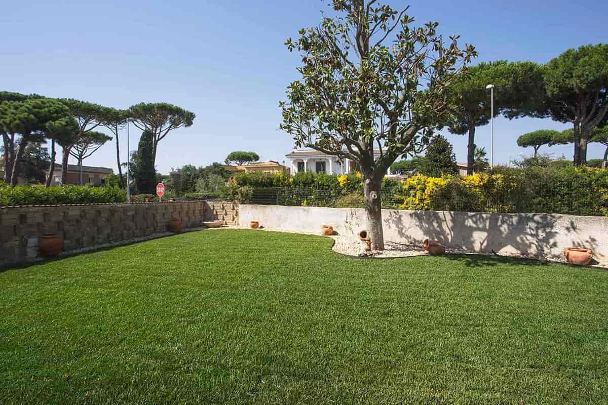 Manutenzione giardini roma latina piani di manutenzione dba for Manutenzione giardini